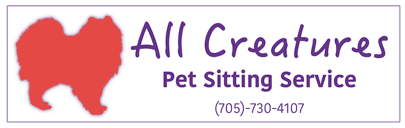 Pet Sitting & House Sitting in Barrie Ontario